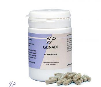 Gunadi