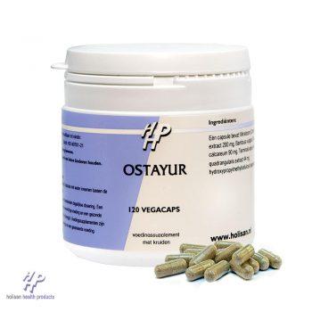 Ostayur