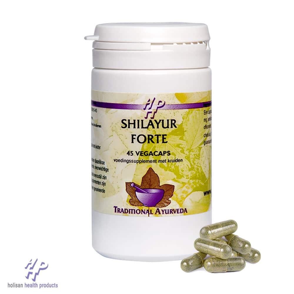 Shilayur Forte
